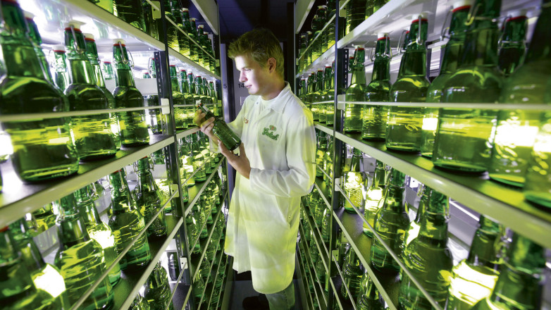 The swingtop bottles are inspected inside the Grolsch Brewery
