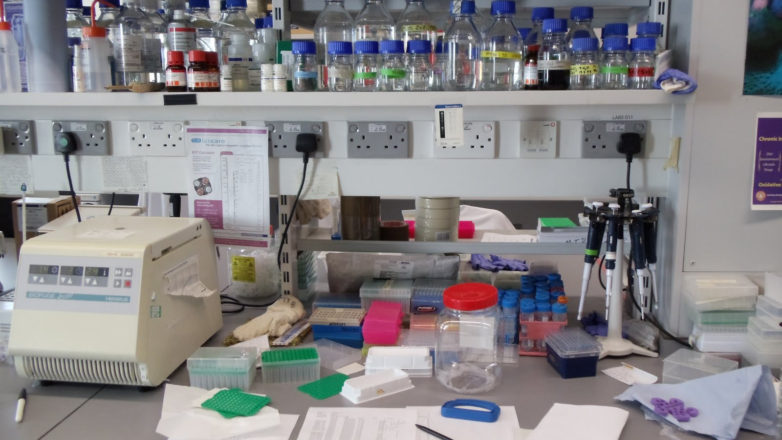 The Lab environment